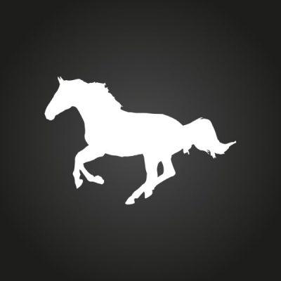 imagen de categoría Emblemas